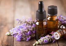 VOZ DEL EXPERTO   ¿Qué plantas y productos naturales pueden aliviar la tos y el resfrío?