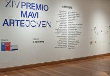 ORGULLO UNAB | Alumnis de Artes Visuales fueron seleccionados en el Premio MAVI Arte Joven 2020