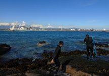 Desde la Bahía de Quintero hasta Cachagua: Detectan altas concentraciones de metales pesados en agua y sedimentos marinos