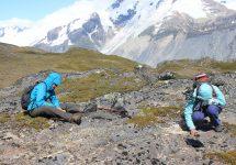 """Proyecto liderado por geólogo UNAB busca potenciar el """"parque Jurásico"""" de Aysén"""