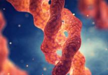 Investigación multidisciplinaria UNAB desarrolla un nuevo compuesto basado en renio capaz de marcar proteínas