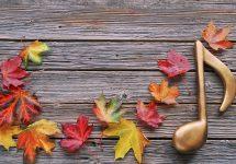 Camerata UNAB celebrará al otoño con música de Beethoven, Schubert y Haendel
